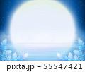 満天の星空と満月、夜の海 55547421