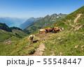 【スイス】 ブリエンツ・ロートホルンのハイキングコース 55548447