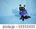 コスプレをしている黒猫の写真(お祭り) 55553435