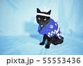 コスプレをしている黒猫の写真(お祭り) 55553436