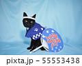 コスプレをしている黒猫の写真(お祭り) 55553438
