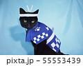 コスプレをしている黒猫の写真(お祭り) 55553439