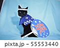 コスプレをしている黒猫の写真(お祭り) 55553440