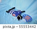 コスプレをしている黒猫の写真(お祭り) 55553442