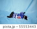 コスプレをしている黒猫の写真(お祭り) 55553443