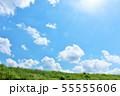 夏の青空と草原 55555606