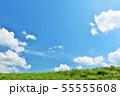 夏の青空と草原 55555608