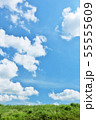 夏の青空と草原 55555609