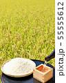 秋の田んぼと日本酒 55555612