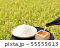 秋の田んぼと日本酒 55555613