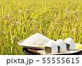 秋の田んぼと新米のおにぎり 55555615