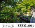 鎌倉 長谷寺 放生池 55561091