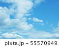 自然風景 空 草原 55570949