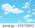 自然風景 空 草原 55570952