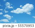 自然風景 空 草原 55570953
