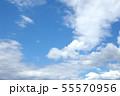 自然風景 空 草原 55570956
