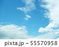 自然風景 空 草原 55570958