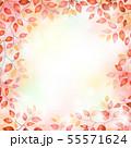 赤い木の葉のフレーム 55571624
