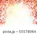 赤い木の葉のフレーム 55578064
