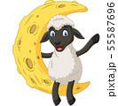 Cartoon cute sheep sitting on the moon 55587696