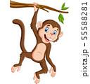 Cartoon monkey hanging in tree branch 55588281