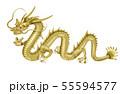 龍神のイラスト 55594577