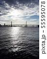 横浜ベイブリッジ 55595078