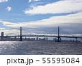 横浜ベイブリッジ 55595084