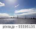 横浜ベイブリッジ 55595135