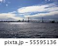 横浜ベイブリッジ 55595136