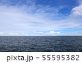 海 55595382