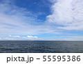 海 55595386