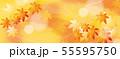 紅葉のイラスト 55595750