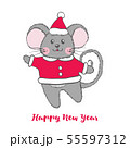 Cute Mouse character in Santa Claus costume. 55597312