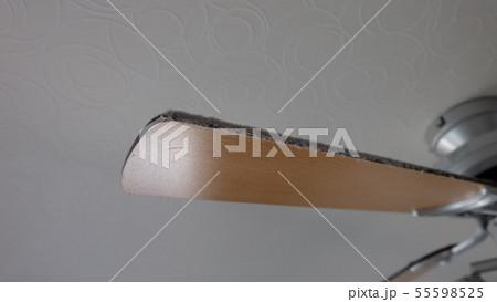 シーリングファンの羽の埃 55598525