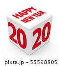 Button 2020 55598805