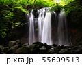 那須乙女の滝 55609513