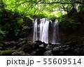 乙女の滝那須高原 55609514