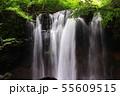 那須高原清らかな乙女の滝の流れ 55609515