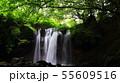 乙女の滝那須 55609516