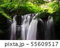 乙女の滝那須高原 55609517