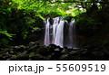 乙女の滝 55609519