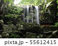 赤滝・栃木県矢板市 55612415