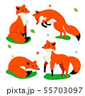 Cute red fox - flat design style set of characters 55703097