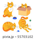 Cute ginger cat - flat design style set of characters 55703102
