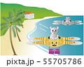 南国のトラ猫ドローン2機とネズミくん2 プレゼント 55705786