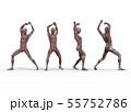 男性 解剖 筋肉 3DCG イラスト素材 55752786