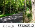 万葉の森 55808512