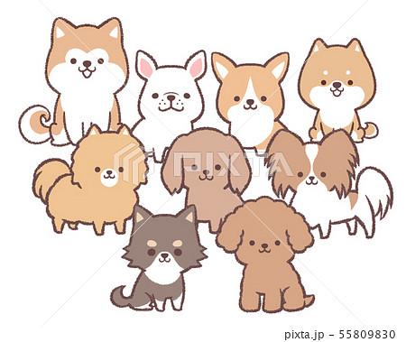 犬集合 55809830