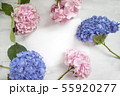 Pastel colored Hydrangea Flowers on White painted table 55920277